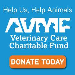 Veterinary Care Charitable Fund